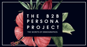 The B2B Persona Project